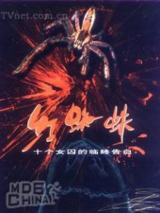 电视剧《红蜘蛛1》 在线观看、剧情、剧照 - P